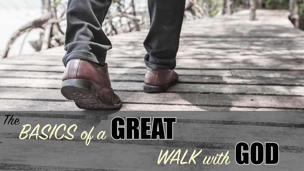 Stirred: Basics to a Great Walk with God